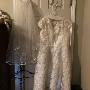 14-16 cream lace wedding dress veil and crinoline